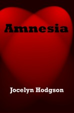 Amnesia a novel